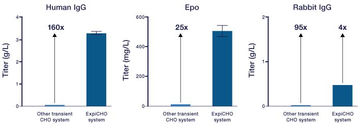 ExpiCHO-S细胞实验流程图
