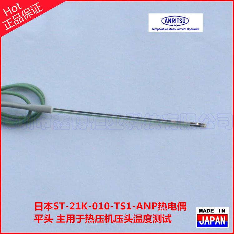 ST-21K-010-TS1-ANP熱電偶-平頭