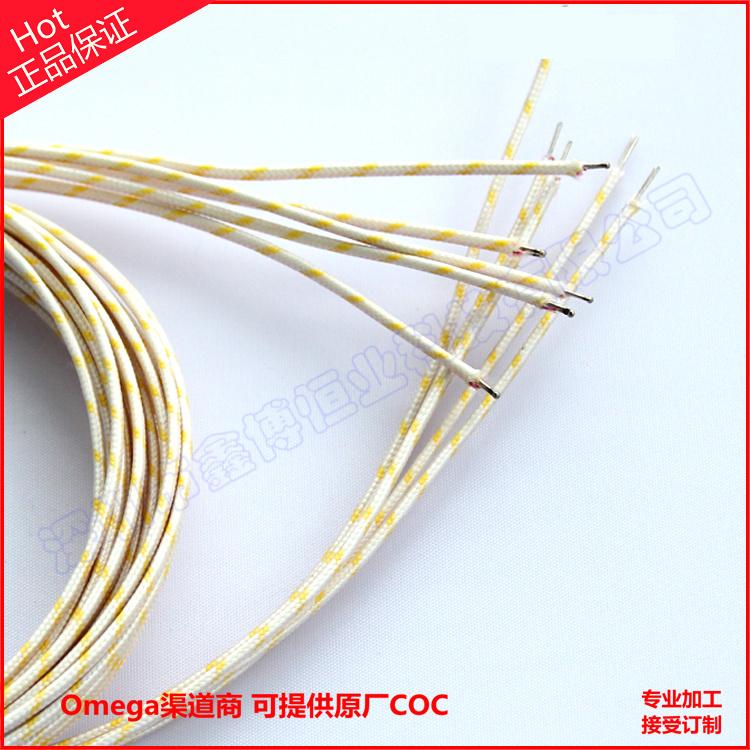 溫度記錄儀用704度高溫熱電偶線=鑫博組裝