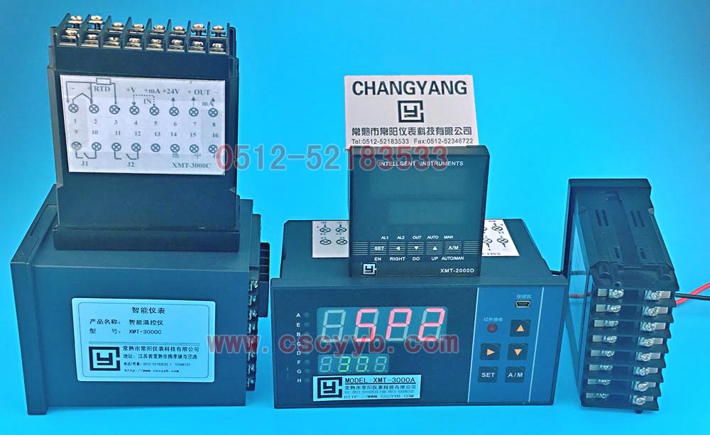 XMT-2000智能儀表