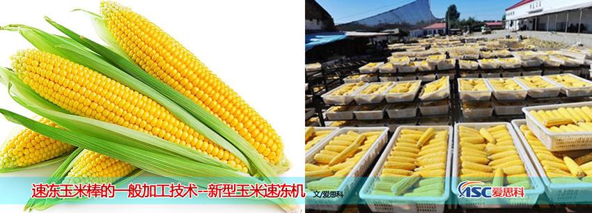 玉米速冻机