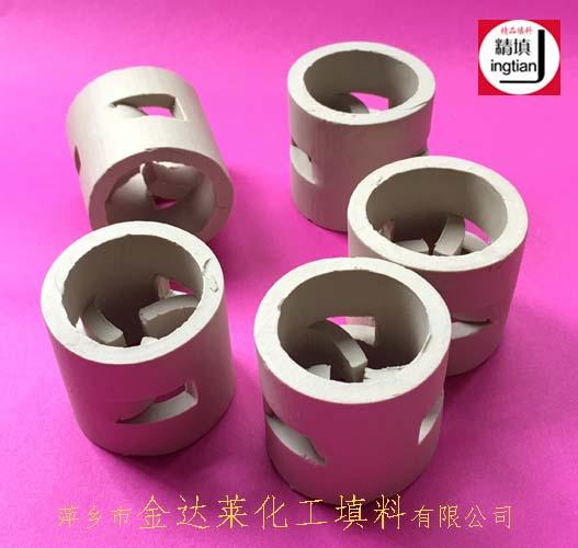 陶瓷鲍尔环填料 萍乡金达莱