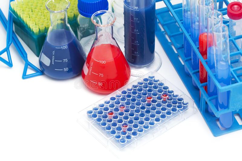 小鼠补体片断3a(C3a)ELISA试剂盒